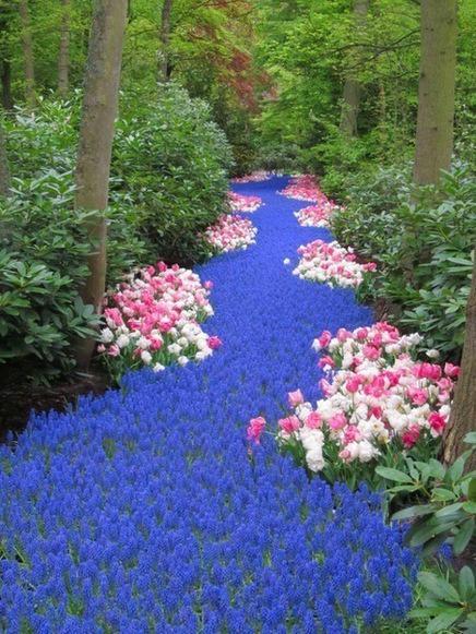Река из цветов.jpg